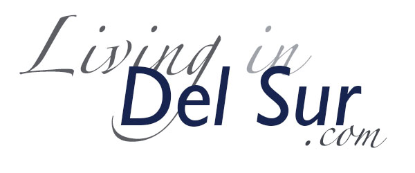 #1 DEL SUR SAN DIEGO Real Estate Blog- Del Sur Homes & Lifestyle